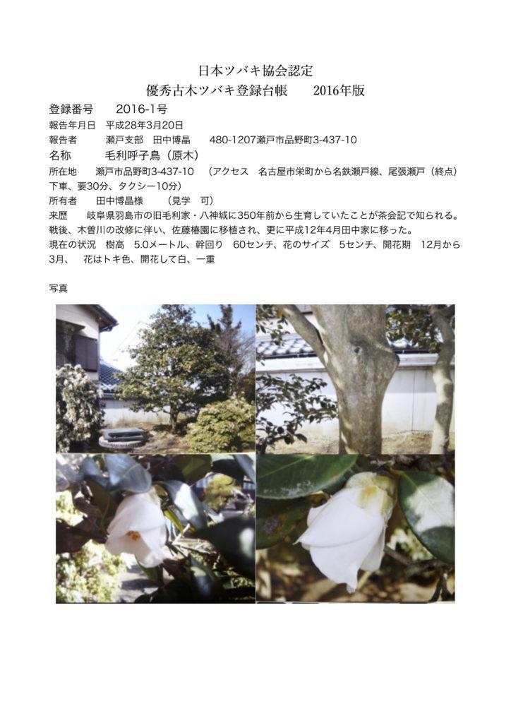 2016-1号 毛利鳴子鳥(原木)