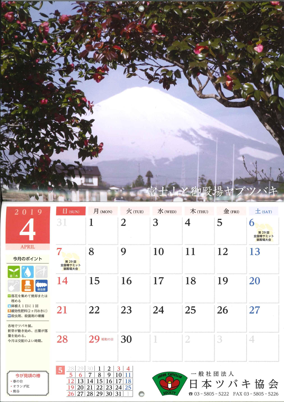 椿カレンダー2019中面
