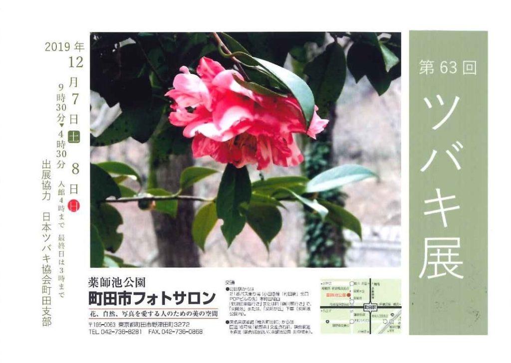 63町田ツバキ展20191207