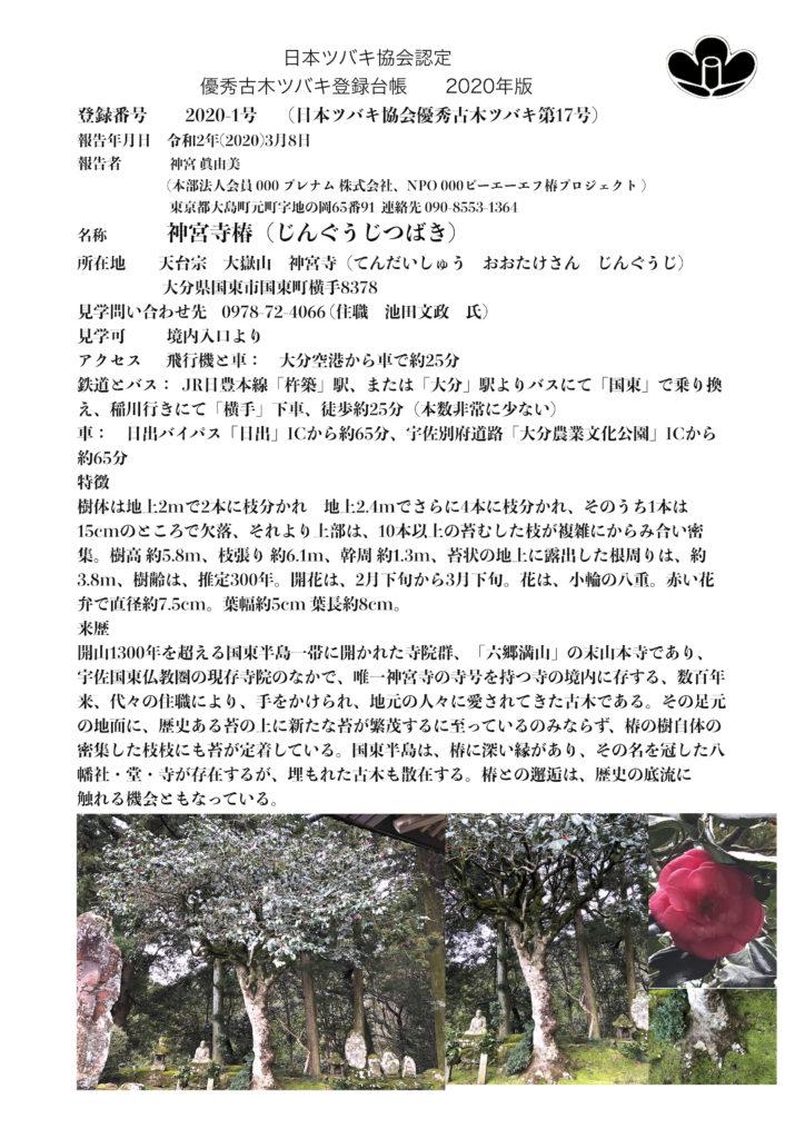 2020-1神宮寺椿縮小版