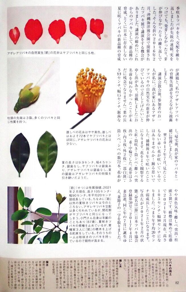園芸JAPAN5月号-4