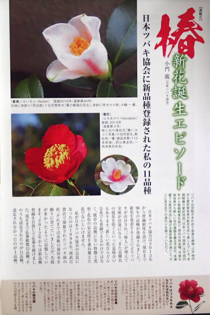 園芸JAPAN6月号-2