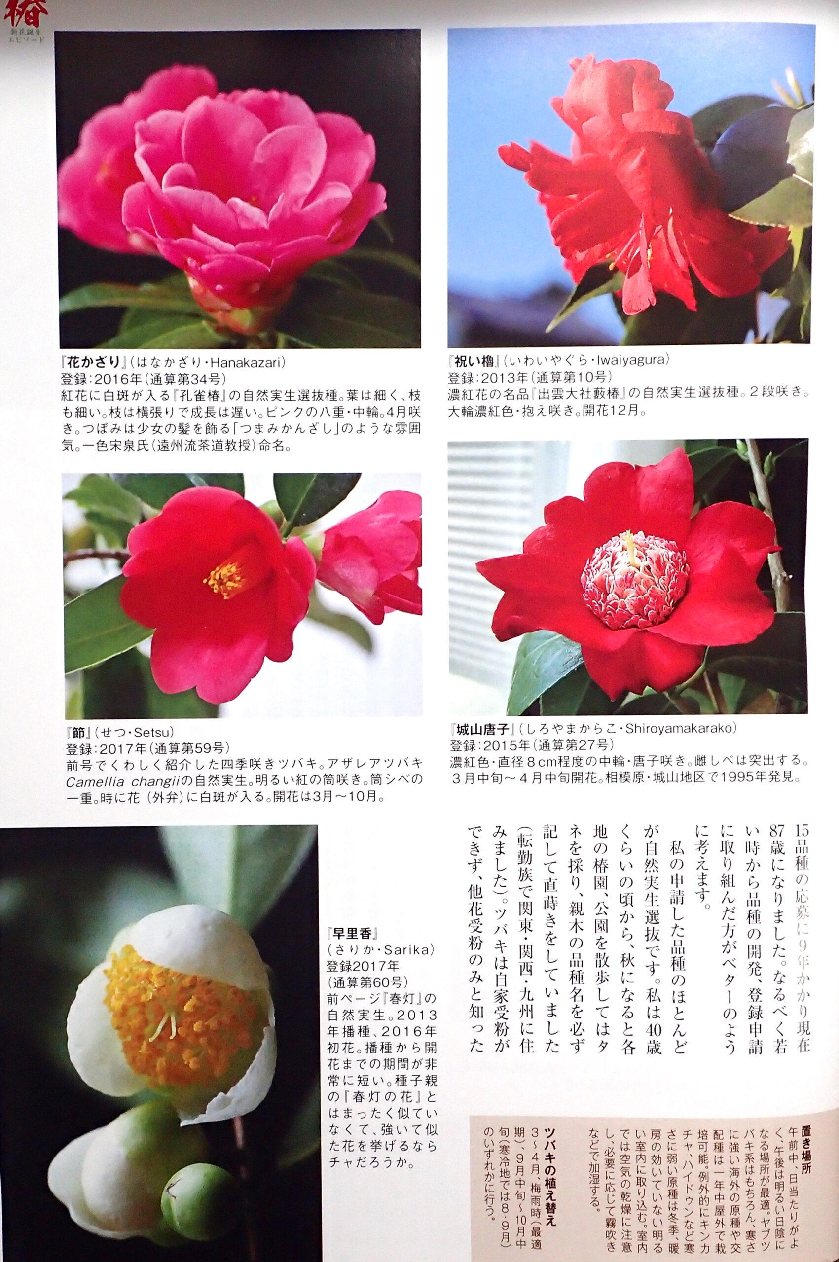 園芸JAPAN6月号-3
