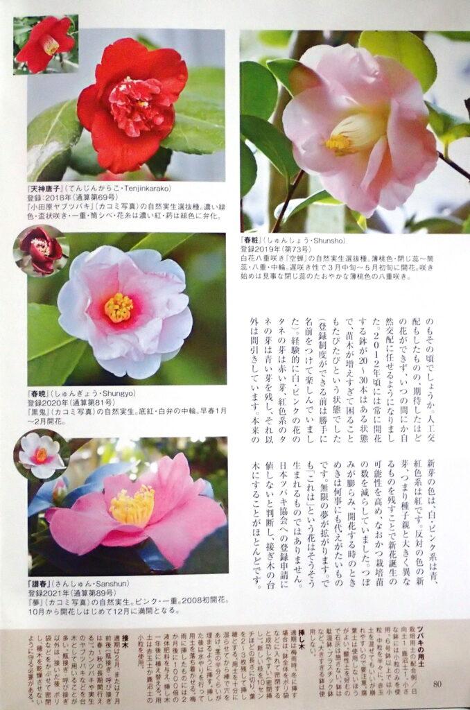園芸JAPAN6月号-4