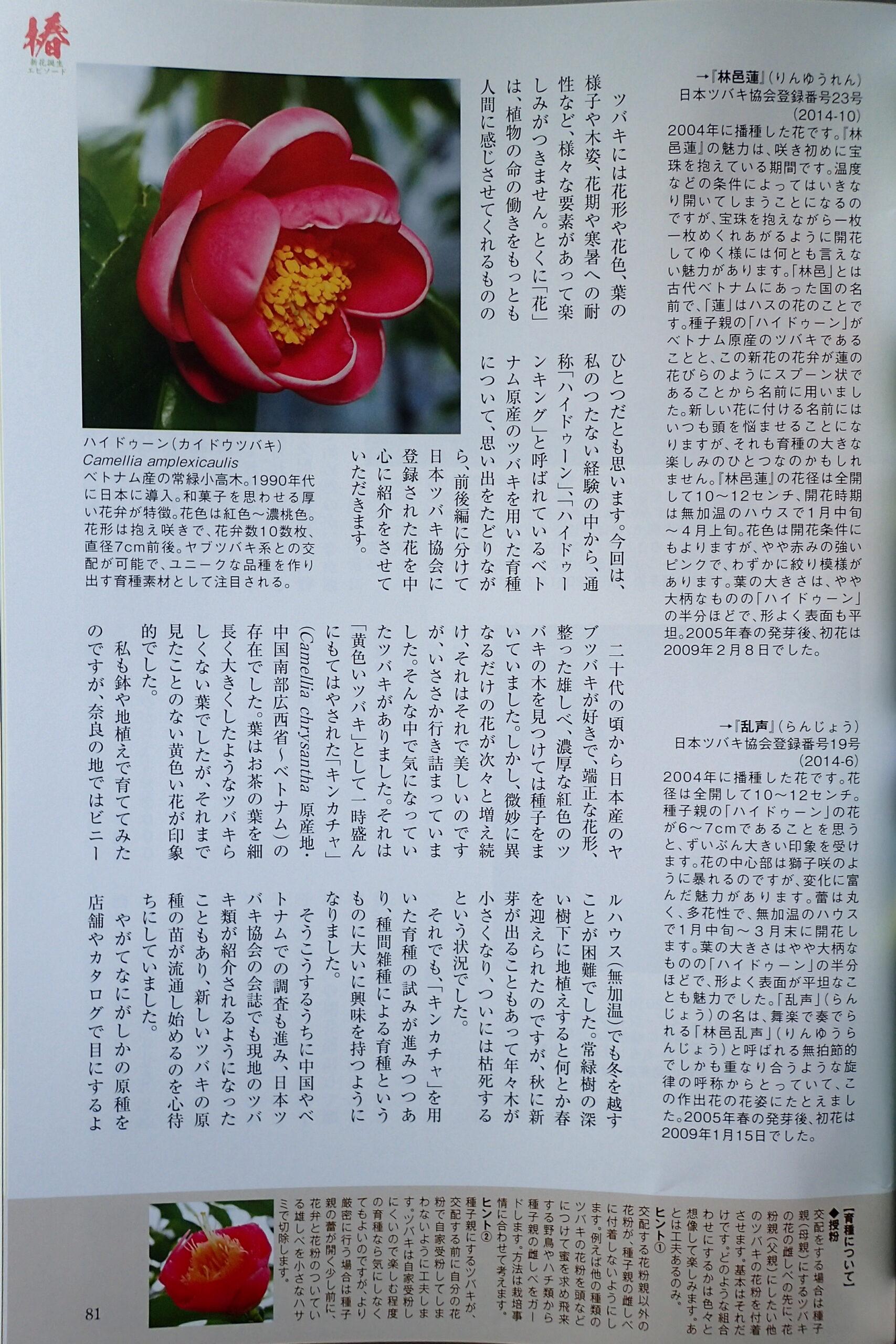 園芸JAPAN7月号-3